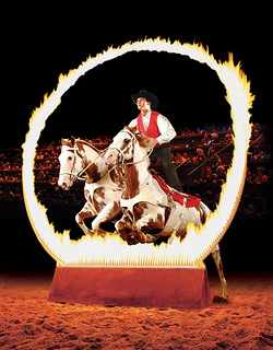 Horses jump through ring of fire during this horseback riding vacation at the Dixie Stampede