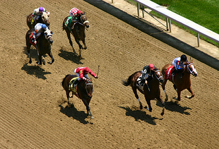 Horse racing tips from Daily Racing Form help beat the odds at the track