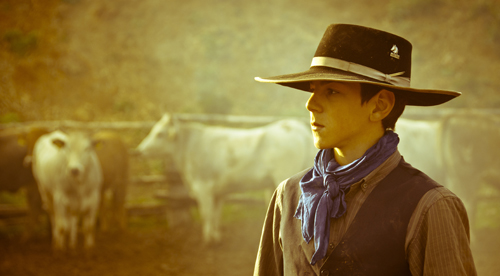 Butteri cowboys from the Maremma region of Italy, have been herding Maremmana cattle for centuries.