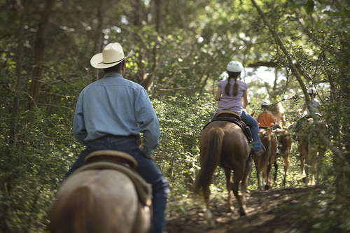Horseback Riding vacation at Hyatt Lost Pines in Texas