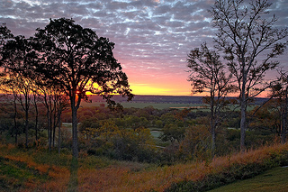Enjoy a sunrise looking onto Wolfdancer at Hyatt Lost Pines Resort and Spa in Texas.