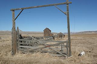 Elko, Nevada; where cowboys gather for poetry