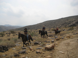 Equestrians on a trail ride through Indian Canyons with Smoke Tree Stables