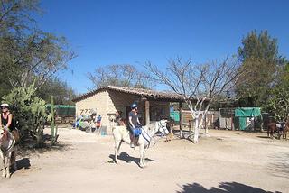 """""""Rancho Pitaya"""""""