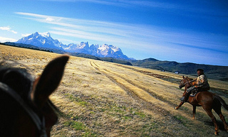 """""""Explora Patagonia horses"""""""