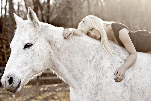 """Jaida Dreyer Half Broke Horses"""