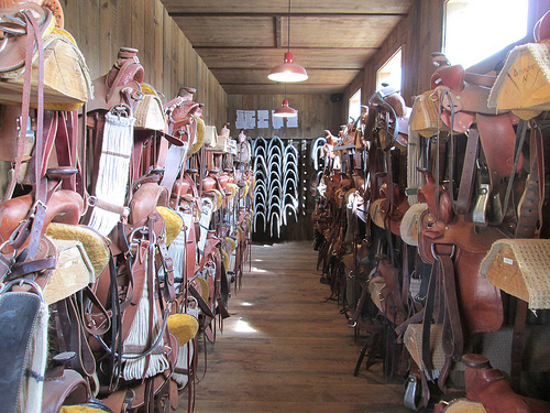 Each horse has a custom-fitted saddle, saddle pad and bridle at the ranch. Photo © Nancy D. Brown