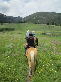Montana horse riding