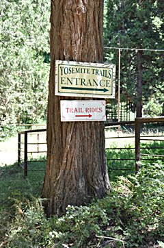 Yosemite trails sign