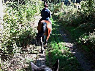 horse riding, Poland