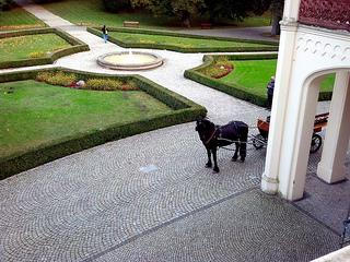 Palac Mierzęcin, horse carriage