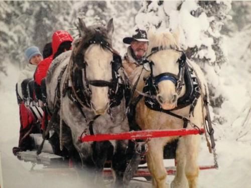 Jasper Park Lodge sleigh ride