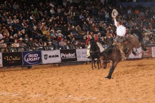 bronc rider, cowboy, Amarillo, Texas, rodeo