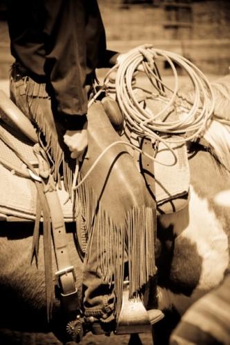 California cowboy chaps