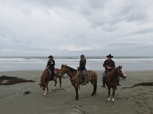 """Outback Trail Rides"" Cayucos, California"