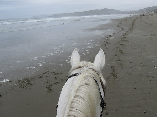 horseback riding, Cayucos, California