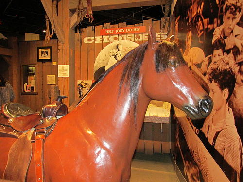 """""""The Red Pony"""" """"Steinbeck"""""""