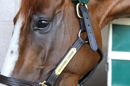 """California Chrome"""