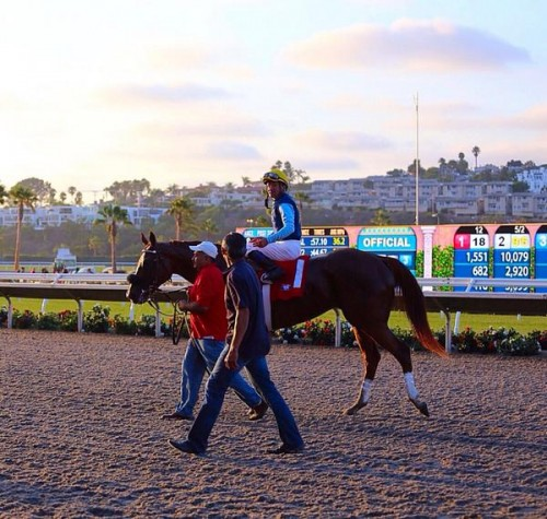 """Del Mar Racetrack"" horse"