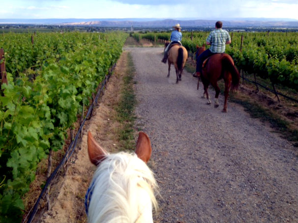 """horseback riding, """"Yakima Valley"""""""