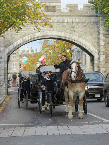 """Porte St. Louis"", Quebec, Canada, horse, carriage"