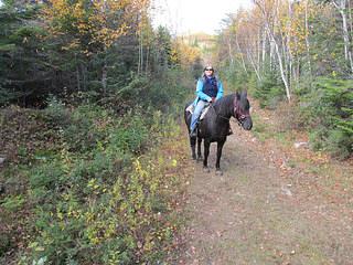 """Nancy D. Brown"" horseback riding, Quebec, Canada"