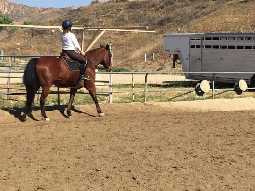 Santa Clarita riding lessons, Santa Clarita trail rides