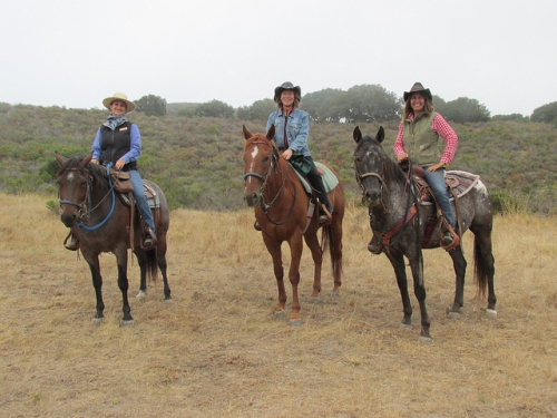 Carmel Valley Trail Rides, Carmel Valley Ranch, horseback riding, trail ride