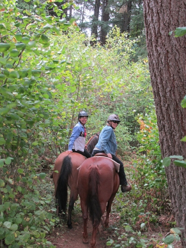 trail ride, horseback ride, Dream Ridge Stables