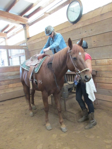 horseback riding, hip replacement, dream ridge stables