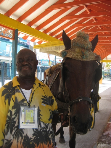 nassau carriage tour, nassau horse, nassau carriage driver