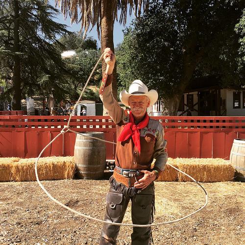dave thornbury, cowboy