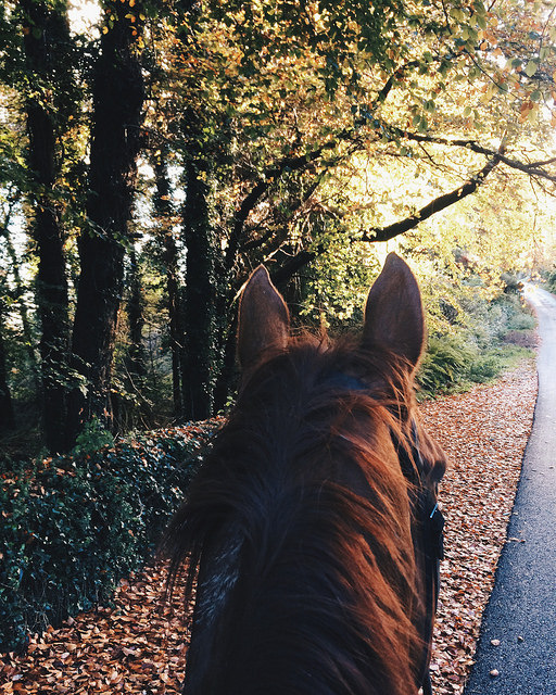 horseback riding vacation, dingle, ireland