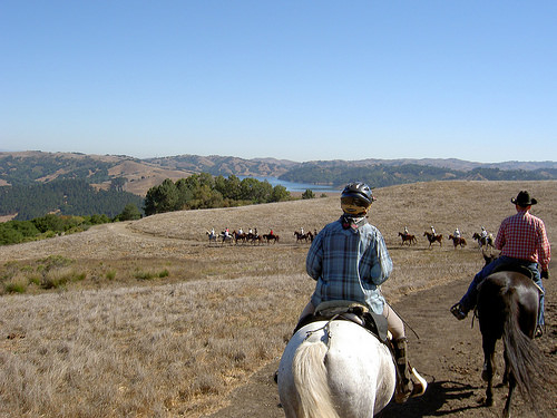 east bay hills trails ride, east bay hills, horseback ride, trail ride, northern california