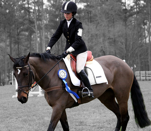 mental toughness, horse, horse show, equestrian, competition