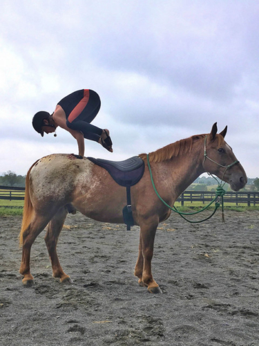 horse yoga, angela nunez, yoga on horseback, yoga, horse
