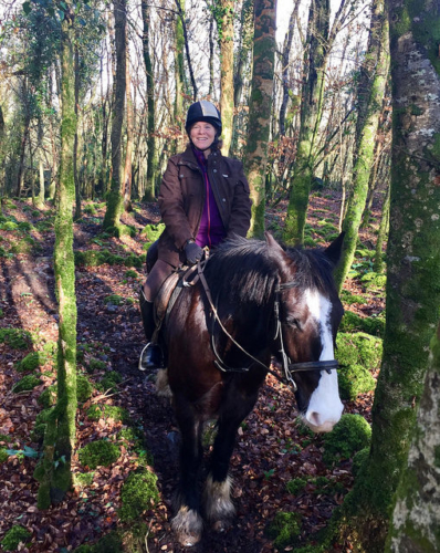 woodland trek, horse trekking, irish forest, horse riding, nancy d. brown, horse riding county clare, ireland horse trekking