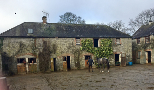 ballyhannon house, ballyhannon house riding school, horse riding county clare, horse riding newmarket on fergus, horse trekking county clare, ireland