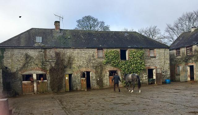 ballyhannon house, ballyhannon house riding school, horse riding county clare, horse riding newmarket on fergus, horse trekking county clare, ireland