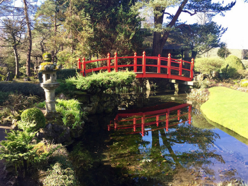 bridge of life, japanese garden, irish national stud & gardens, kildare, ireland