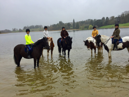 horse riding holiday, equestrian, castle leslie equestrian centre, riding in county monaghan, ireland