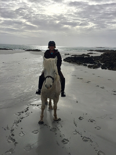 nancy brown, nancy d brown, pony trekking, connemara pony, horse riding, horse, beach, cashel bay, ireland