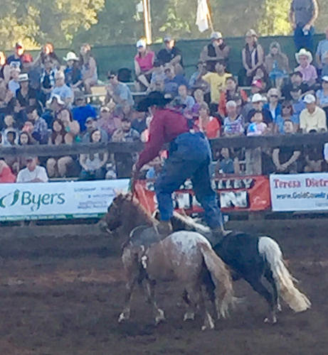 dusty barrett, rodeo clown, penn valley rodeo, penn valley, california rodeo