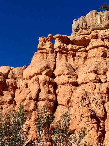 red canyon, hoodoo rock formations, utah, geology