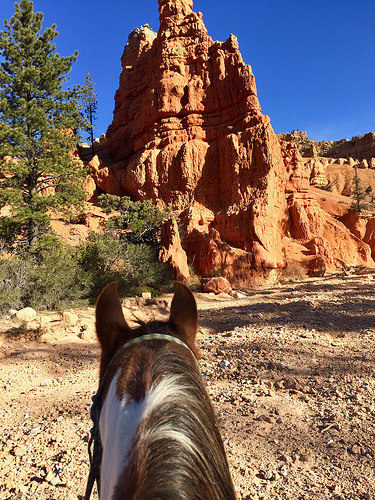 rubys horseback adventures, red canyon, utah, horseback riding
