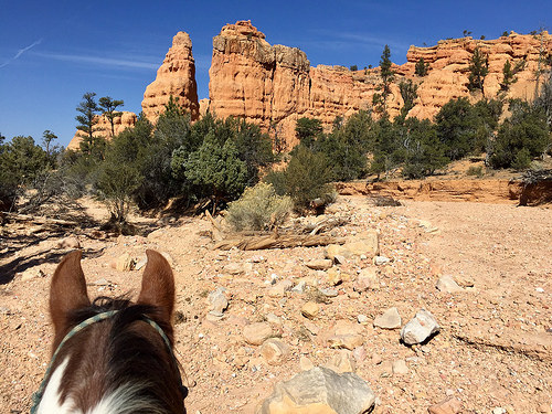 rubys horseback adventures, bryce canyon, red canyon, horseback riding, utah