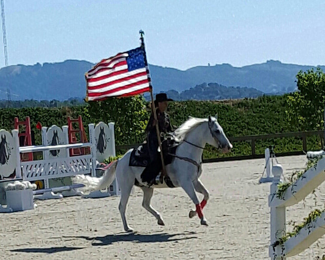 Equestrian Chef Christine Shepherd Interview Writing Horseback - 12 equestrian places in the us