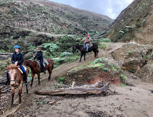 Horseback riding with Ross Ranch.