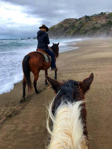 Sea meets sand on California's Mendocino coast.