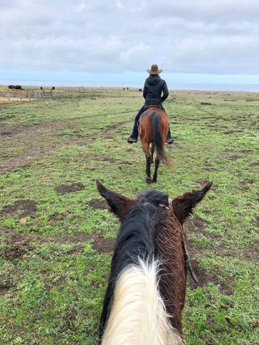 tobi ross, horseback riding, ross ranch, mendocino coast, california trail ride